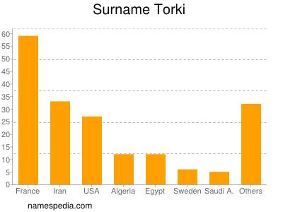 Surname Torki