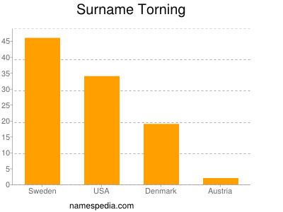 Surname Torning