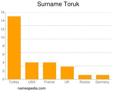 Surname Toruk