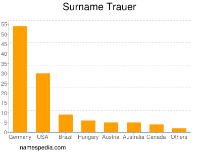 Surname Trauer