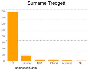 Surname Tredgett