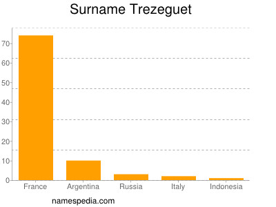 Surname Trezeguet