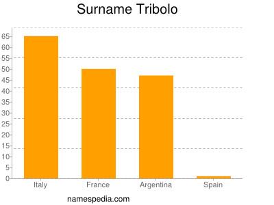 Surname Tribolo