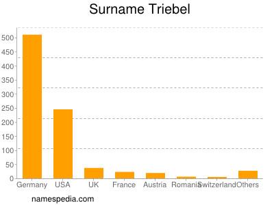 Surname Triebel