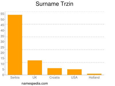 Surname Trzin
