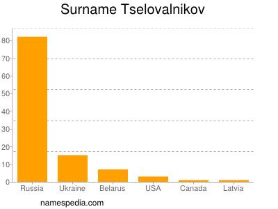 Surname Tselovalnikov