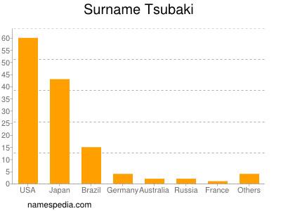 Surname Tsubaki