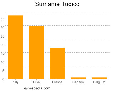 Surname Tudico