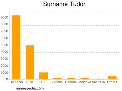 Surname Tudor