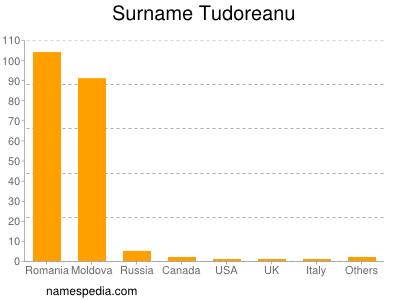 Surname Tudoreanu