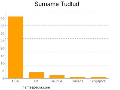 Surname Tudtud
