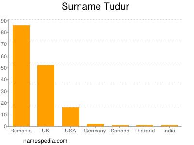 Surname Tudur