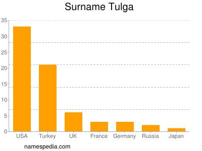 Surname Tulga