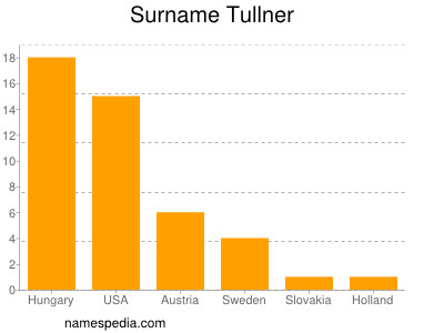 Surname Tullner
