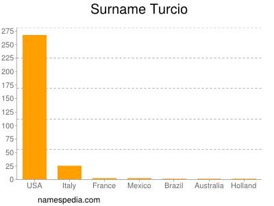 Surname Turcio