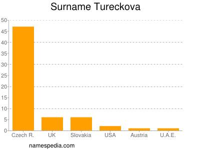 Surname Tureckova