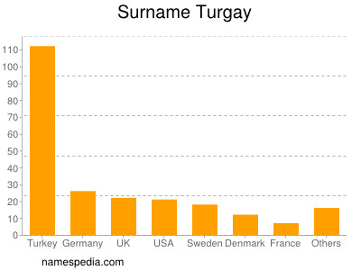 Surname Turgay