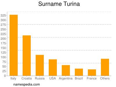 Surname Turina