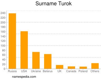 Surname Turok
