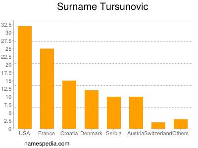 Surname Tursunovic