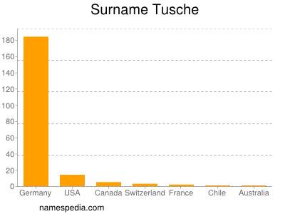Surname Tusche