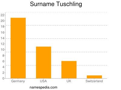Surname Tuschling