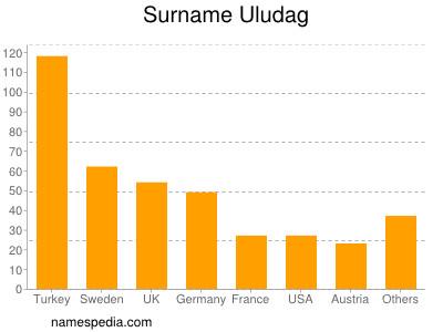 Surname Uludag