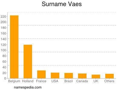 Surname Vaes