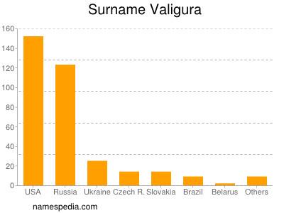 Surname Valigura