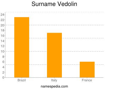 Surname Vedolin
