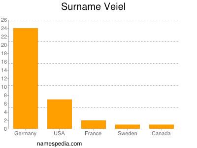 Surname Veiel