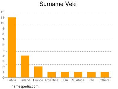 Surname Veki
