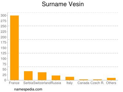 Surname Vesin