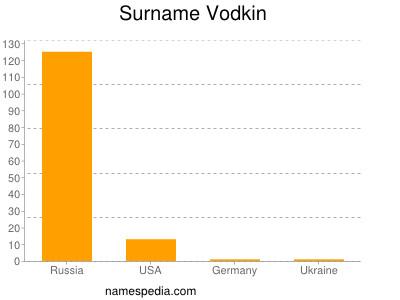 Surname Vodkin