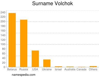 Surname Volchok