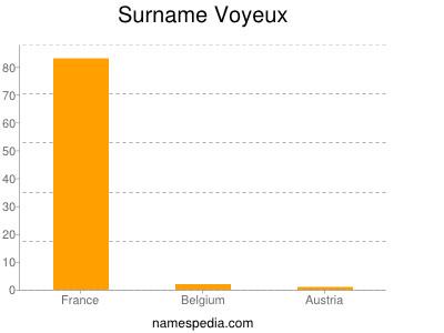 Surname Voyeux