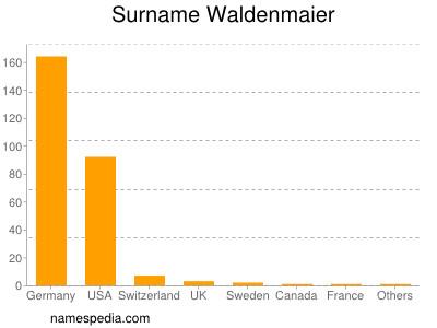 Surname Waldenmaier