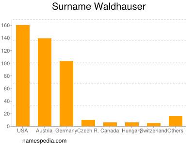 Surname Waldhauser