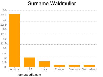 Surname Waldmuller