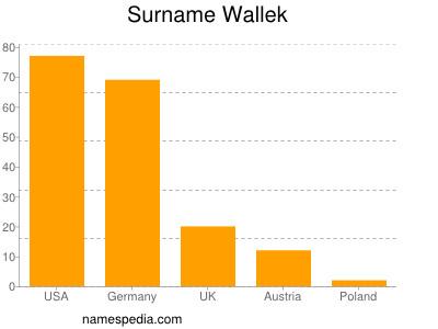 Surname Wallek