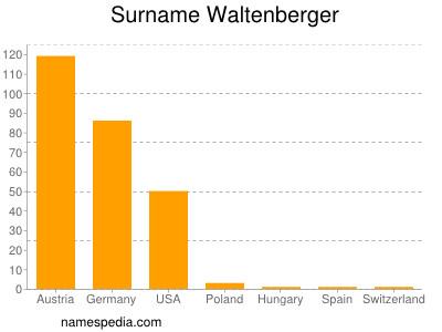 Surname Waltenberger