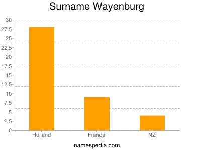 Surname Wayenburg