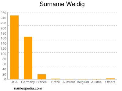 Surname Weidig