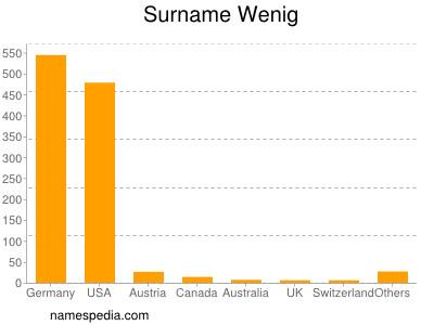 Surname Wenig