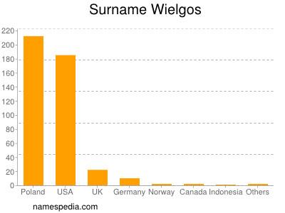 Surname Wielgos