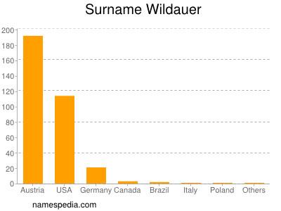 Surname Wildauer
