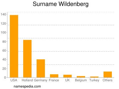 Surname Wildenberg
