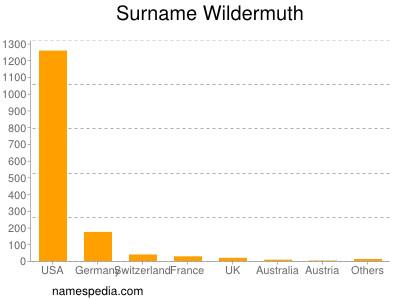 Surname Wildermuth