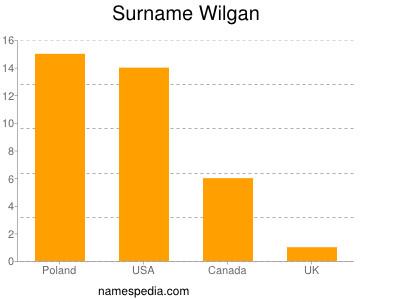 Surname Wilgan