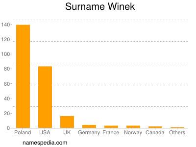 Surname Winek